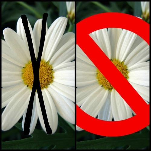 bunga atau tepung